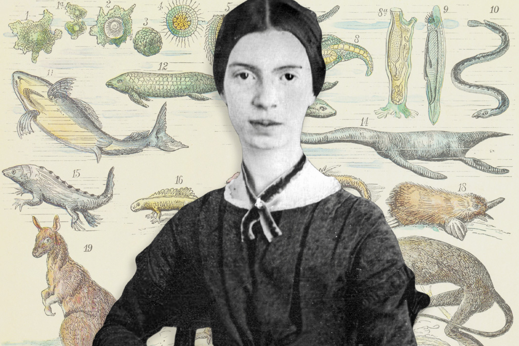 A portrait of Emily Dickinson in front of an evolutionary illustration