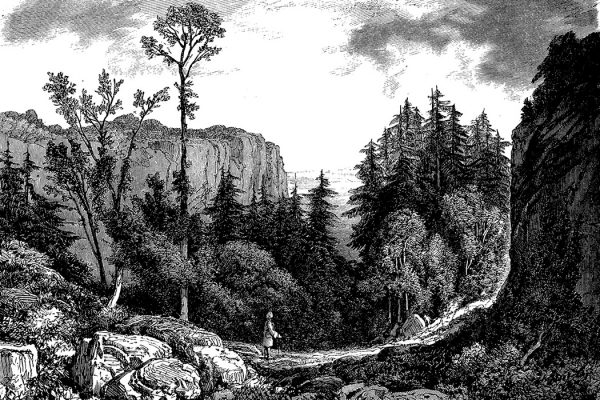 Jean-Jacques Rousseau in nature