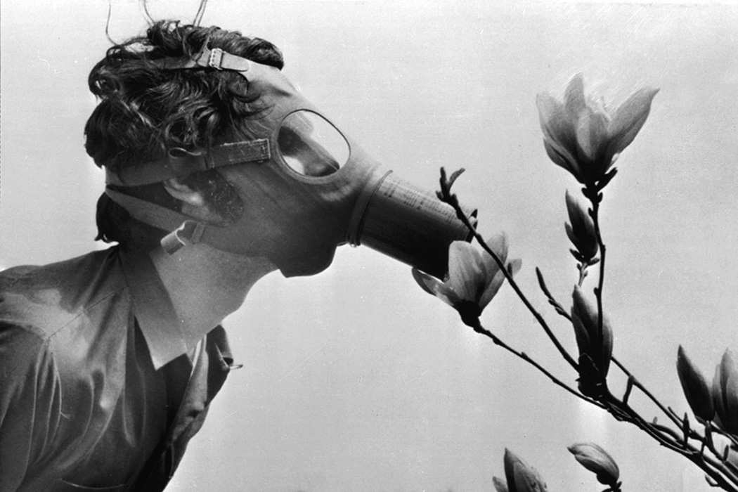 "A Pace College student in a gas mask ""smells"" a magnolia blossom in City Hall Park on Earth Day, April 22, 1970, in New York."
