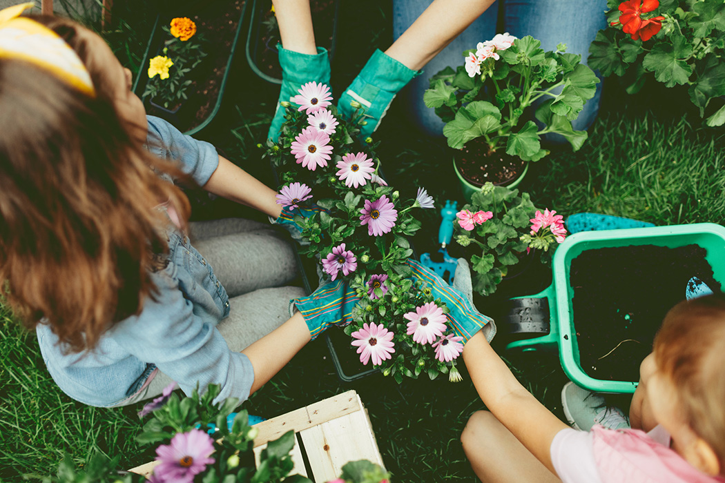 Mother and daughters planting flowers in a backyard