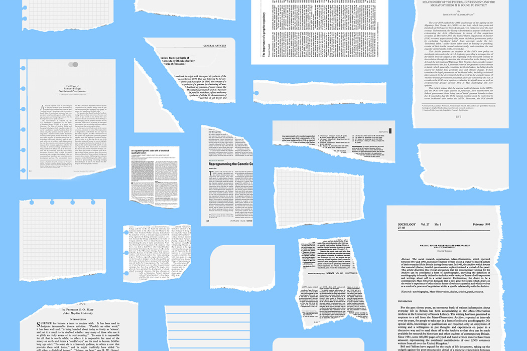 A series of torn up academic papers against a blue background