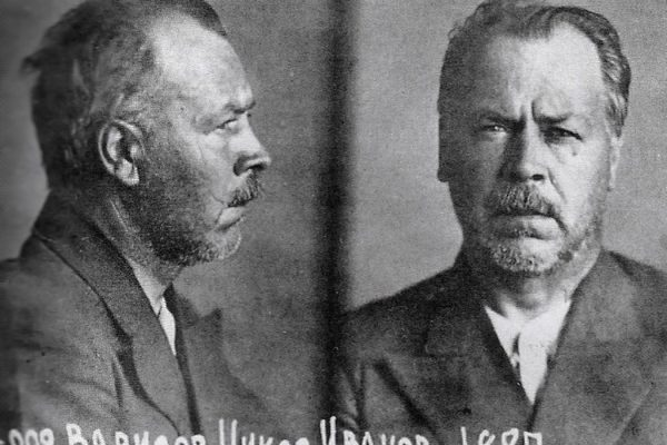 Nikolai Vavilov in prison