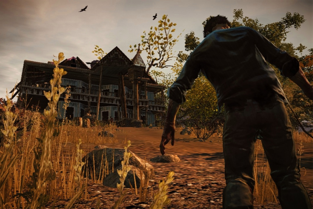 From the video game State of Decay