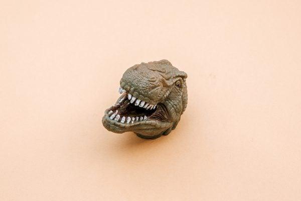 A plastic dinosaur