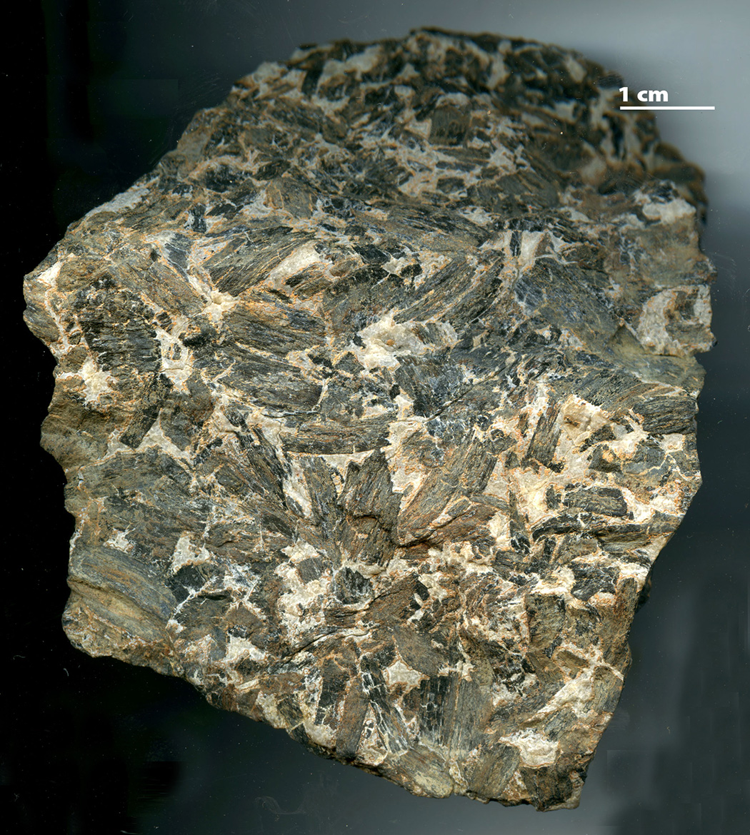 Charcoal partially burned during a Carboniferous fire about 309 million years ago, Grundy County, Illinois