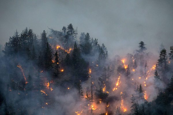 The Bobcat Fire burns through the Angeles National Forest on September 11, 2020 north of Monrovia, California.