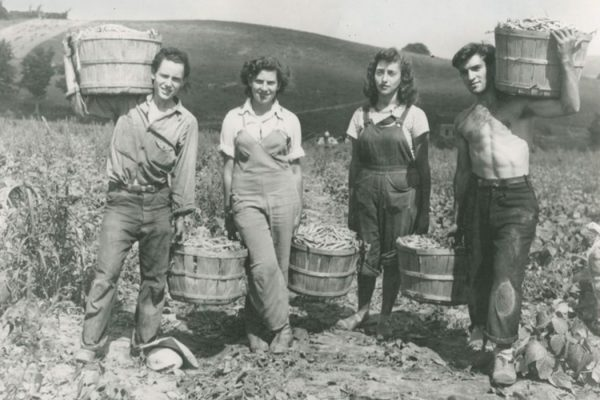 Four top pickers holding barrels of beans. Morrisvile. 1943.