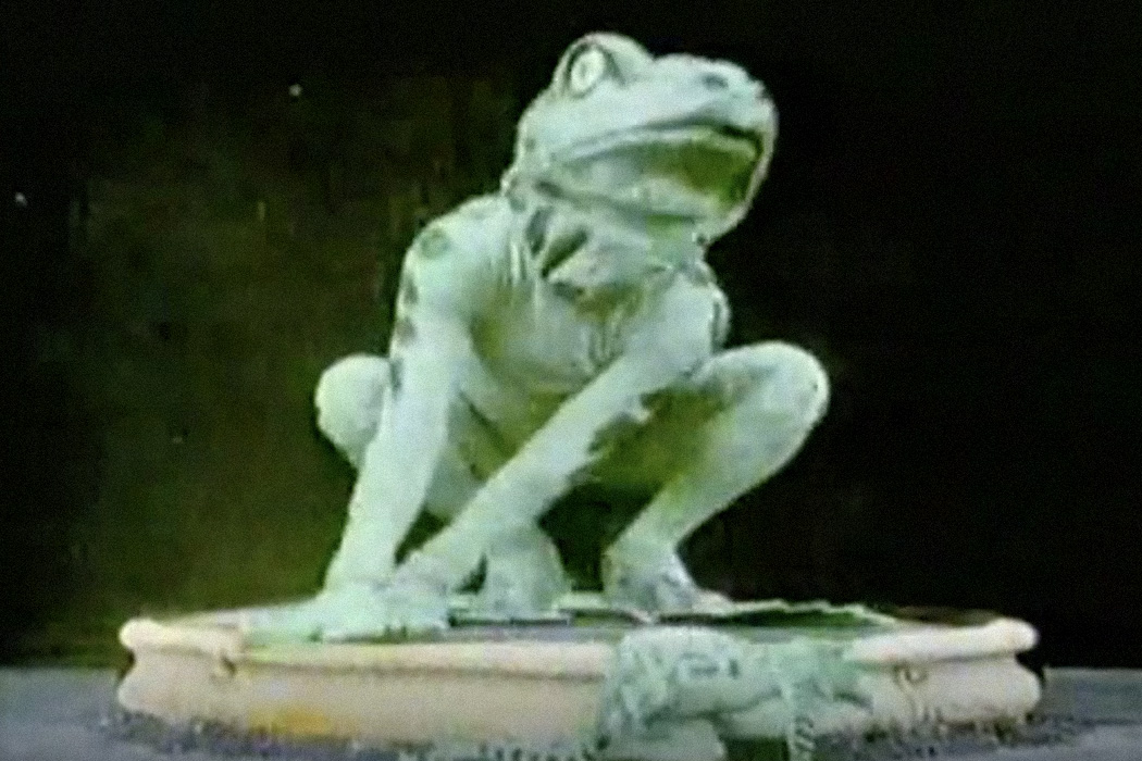 A film still from The Frog