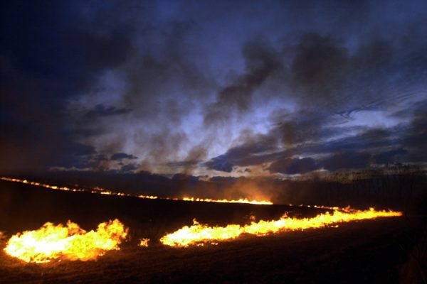 fire lights the hills from a controlled burn off of maize stubble on a farm property at Makikihi in South Canterbury, South Island, New Zealand.