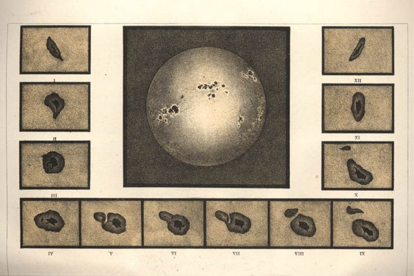 An illustration of sunspots from between 1885 and 1890