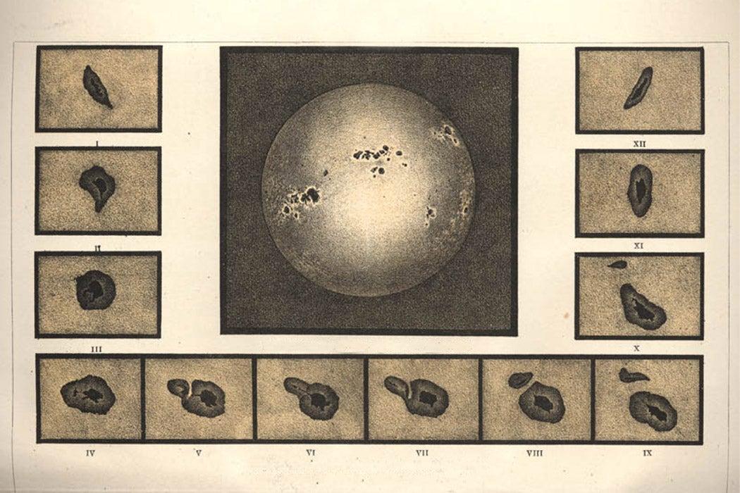 Do Sunspots Explain Global Recession, War, or Famine? | JSTOR Daily