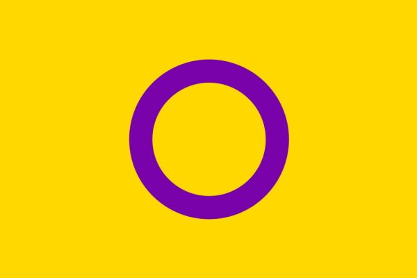 The Intersex pride flag