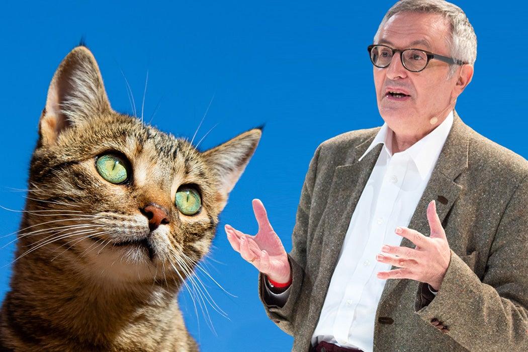 Philosopher John Gray beside a cat