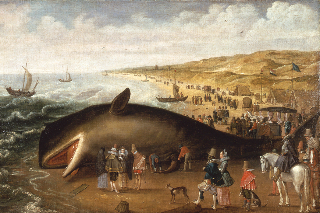 A beached whale painting
