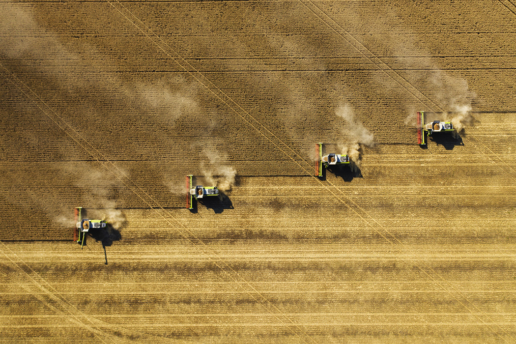 Dust rising from combine during crop harvesting
