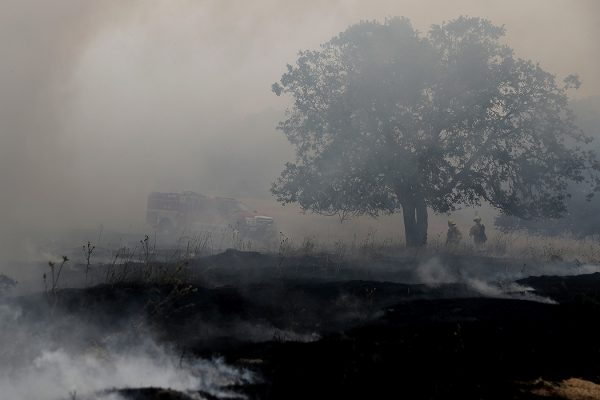 Firefighters monitor a controlled burn at Bouverie Preserve on May 30, 2017 in Glen Ellen, California