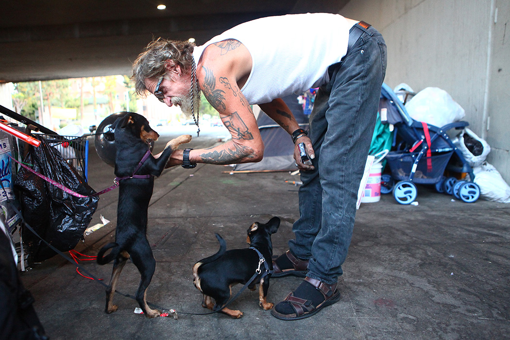 Antonio DeSilva, who is currently homeless, plays with his dogs outside his tent on September 09, 2019 in Los Angeles, California