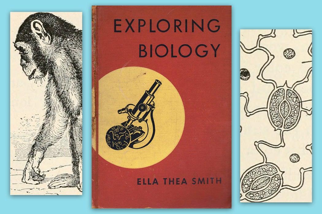 Exploring Biology by Ella Thea Smith