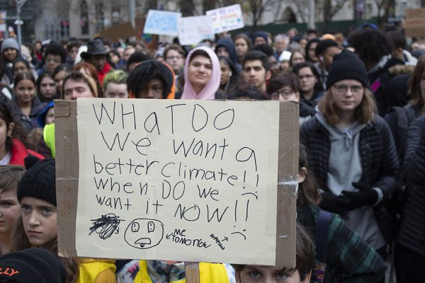 A protester at the Global Climate Strike, December 6, 2019